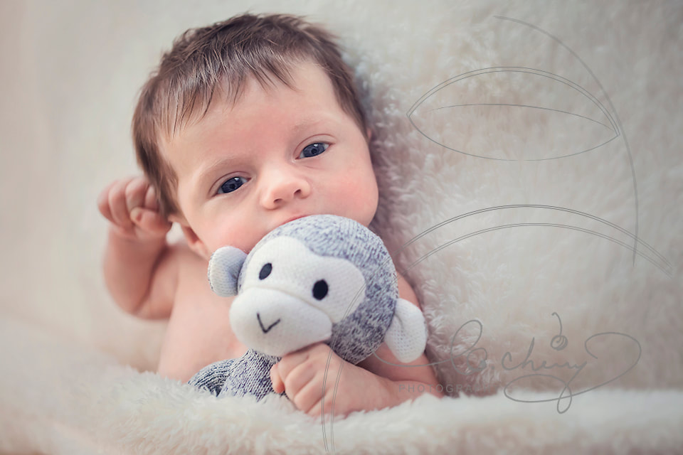Newborn baby boy on blanket holding a stuffed monkey.